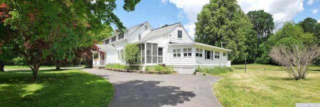 1 Drowne Road, Old Chatham, NY 12136 (MLS #130573) :: Gabel Real Estate