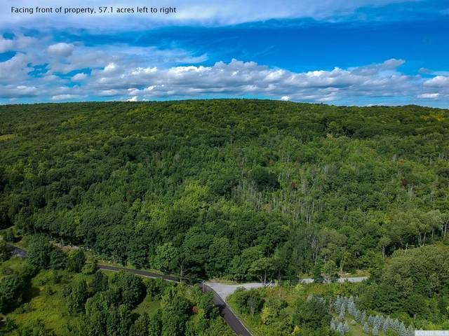 0 Knowles Road, Rensselaerville, NY 12147 (MLS #130915) :: Gabel Real Estate