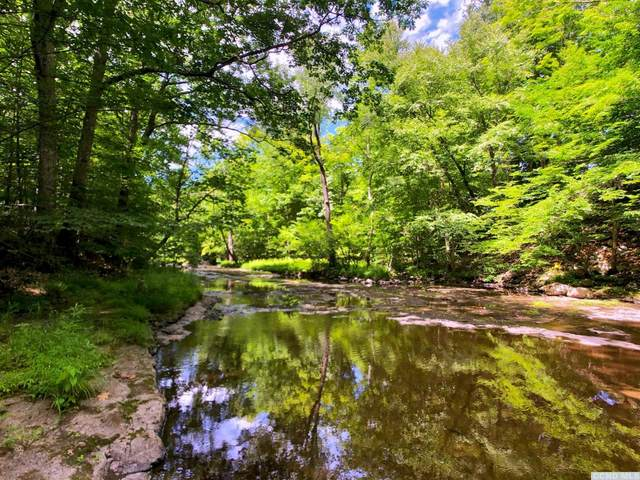0 Red Mill Road, Greenville, NY 12083 (MLS #132963) :: Gabel Real Estate