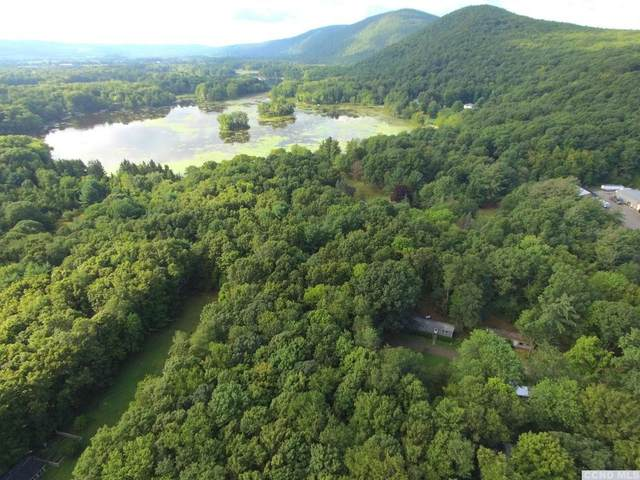 5 Lakeside Lane, Pine Plains, NY 12567 (MLS #134142) :: Gabel Real Estate