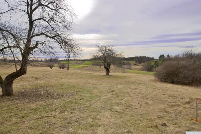 0 County Route 28B, Kinderhook, NY 12184 (MLS #135775) :: Gabel Real Estate