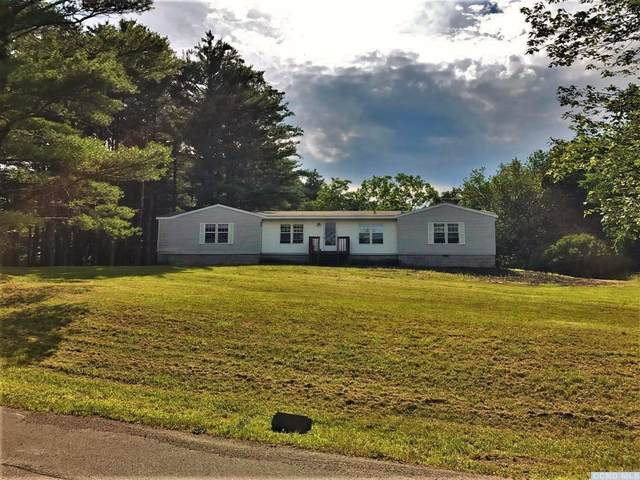 107 Spahmer Road, Cairo, NY 12451 (MLS #137466) :: Gabel Real Estate