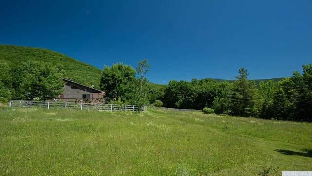30 Arbor Road, Westkill, NY 12492 (MLS #137987) :: Gabel Real Estate