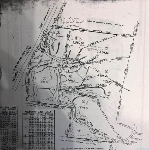 0 Boulder Brook Road, Windham, NY 12496 (MLS #134829) :: Gabel Real Estate