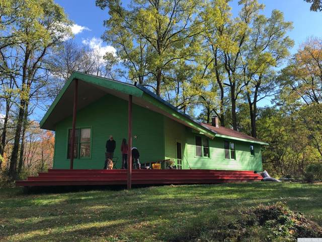 101 Dorland, Chatham, NY 12136 (MLS #135689) :: Gabel Real Estate