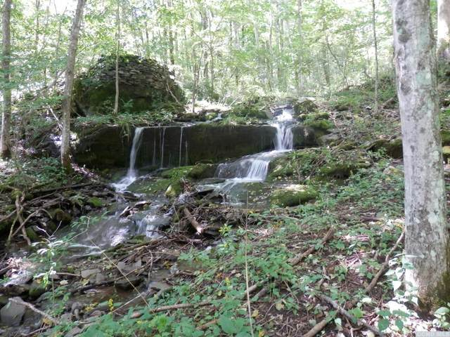 104 Old Herrick, Middletown, NY 12455 (MLS #137213) :: Gabel Real Estate
