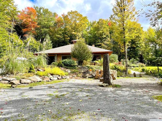 5008 State Route 23, Windham, NY 12496 (MLS #139556) :: Gabel Real Estate