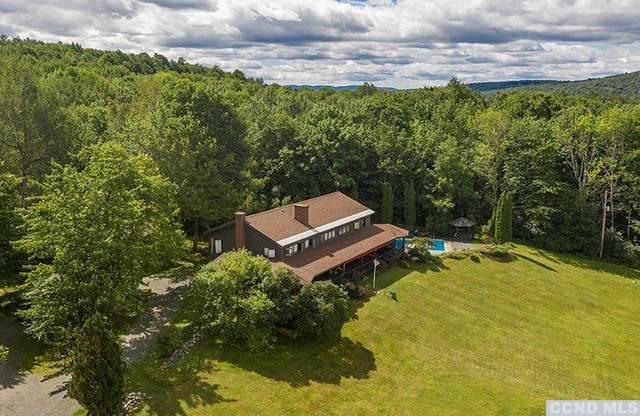 20 Adams Road, Stephentown, NY 12168 (MLS #133460) :: Gabel Real Estate