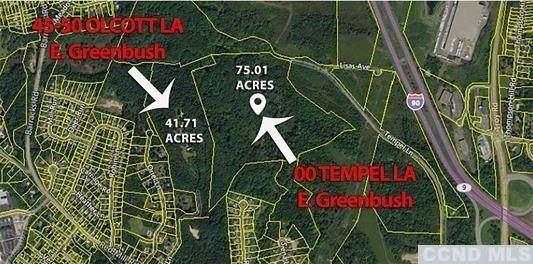 0 Tempel Ln, East Greenbush, NY 12144 (MLS #128590) :: Gabel Real Estate