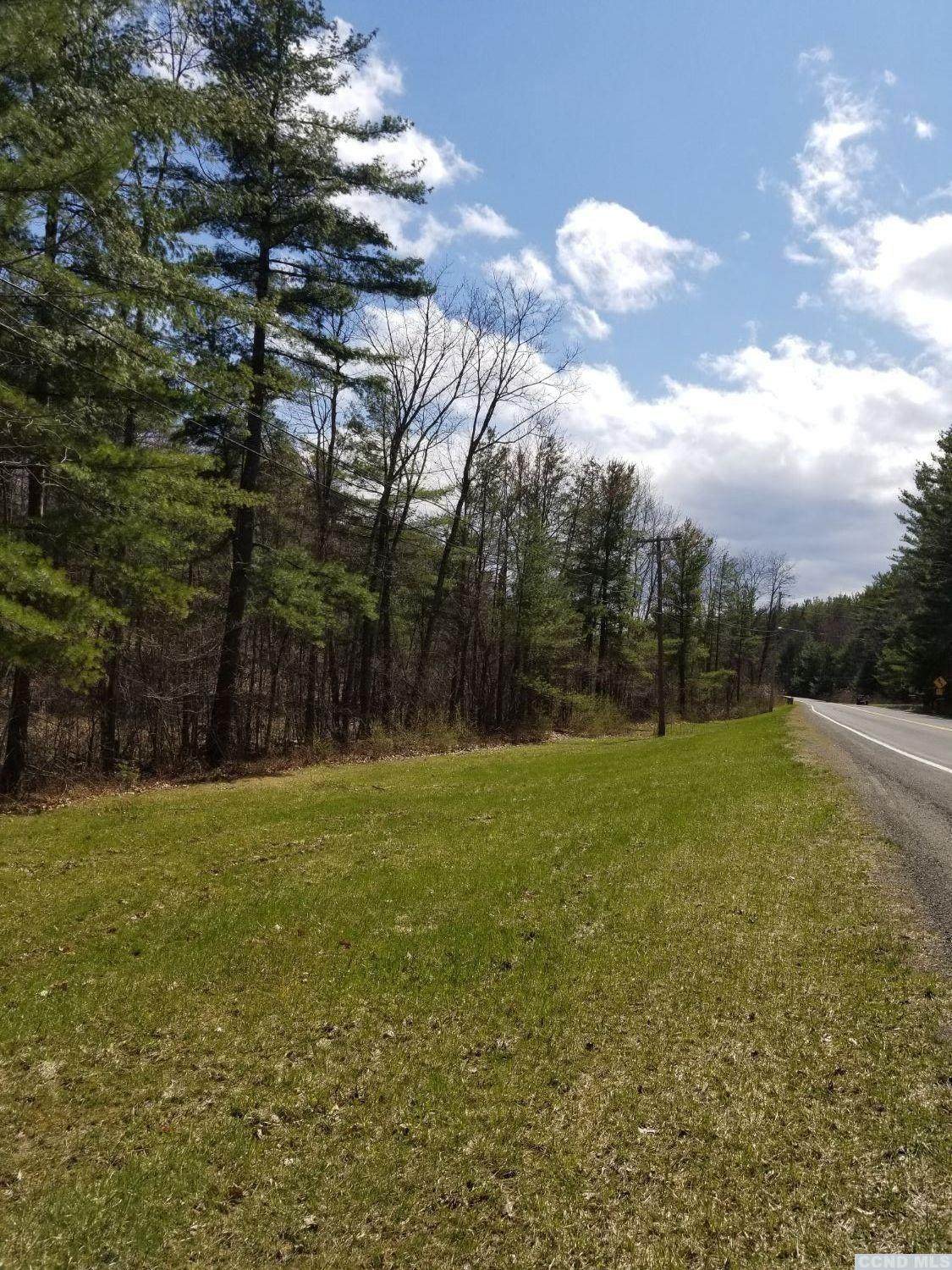 0 County Route 13 - Photo 1