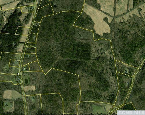 0 County Route 9, Canaan, NY 12060 (MLS #132539) :: Gabel Real Estate