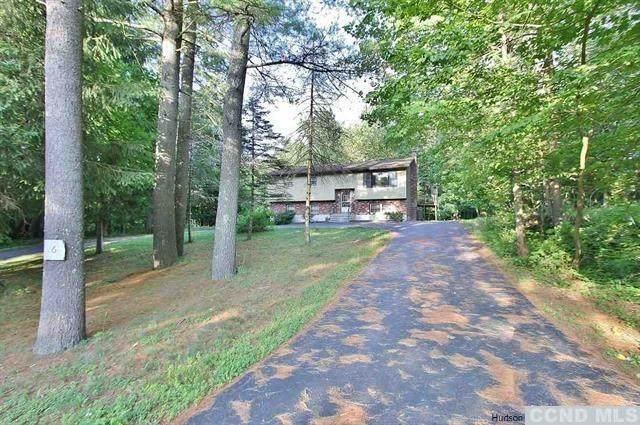 6 Old Green Lake Road, Catskill, NY 12414 (MLS #132920) :: Gabel Real Estate