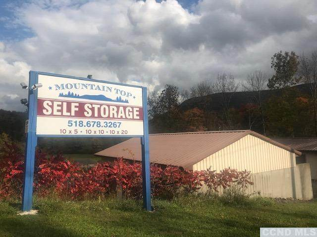 8859 Route 23 A, Jewett, NY 12444 (MLS #134631) :: Gabel Real Estate