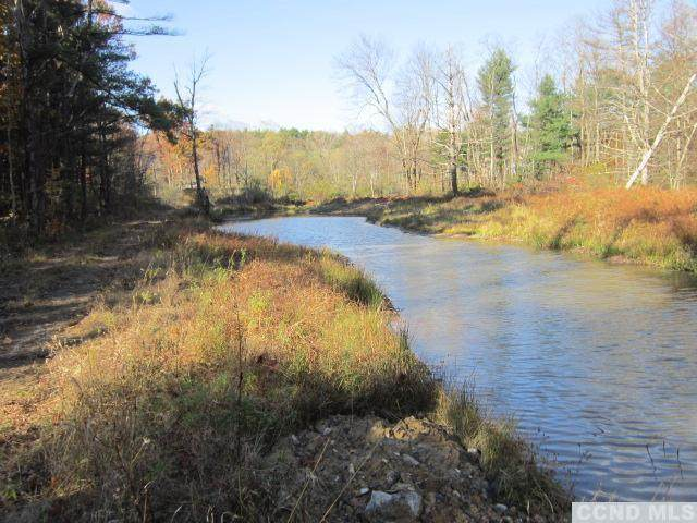 0 County Route 51, Coxsackie, NY 12124 (MLS #135047) :: Gabel Real Estate