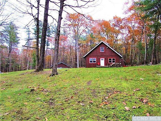 207 5 Mile Woods Road, Catskill, NY 12414 (MLS #135144) :: Gabel Real Estate