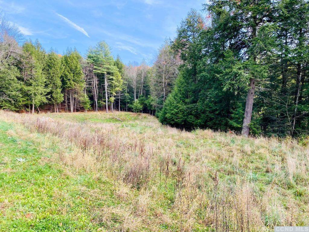 13191 State Route 22, Lot 5 - Photo 1