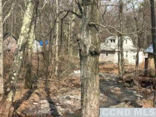 104 Bald Hill Rd N, Round Top, NY 12473 (MLS #136090) :: Gabel Real Estate