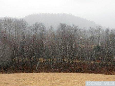 0 Tunnel Hill Road, Canaan, NY 12029 (MLS #136894) :: Gabel Real Estate