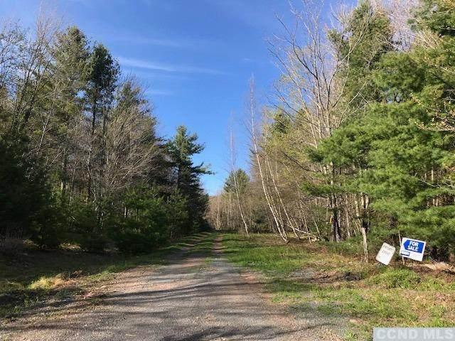 244 Sugar Loaf Trail, Jewett, NY 12424 (MLS #137479) :: Gabel Real Estate