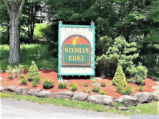 67 Windham Ridge Road 16E, Windham, NY 12496 (MLS #138107) :: Gabel Real Estate