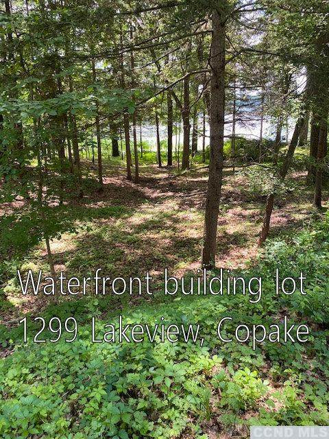 1299 Lakeview - Photo 1