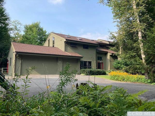 212 Wesley Acres Road, Hunter, NY 12436 (MLS #139362) :: Gabel Real Estate