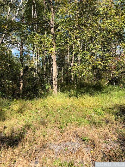 7 Screech Owl Court, Athens, NY 12015 (MLS #139522) :: Gabel Real Estate
