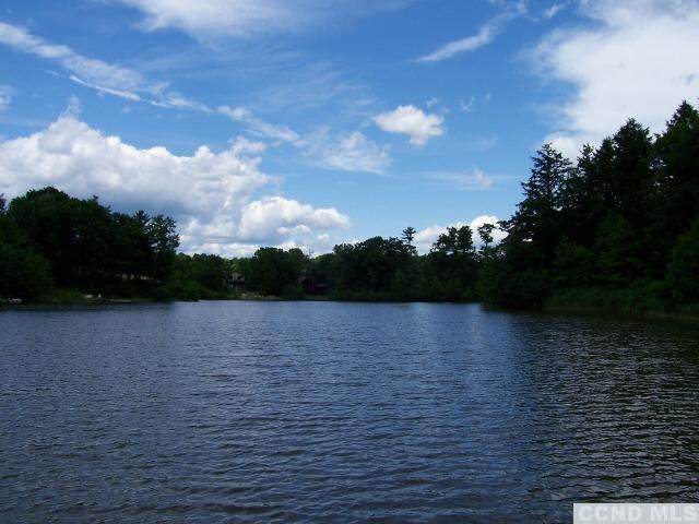 52 Famous Author Circle, Athens, NY 12015 (MLS #139703) :: Gabel Real Estate