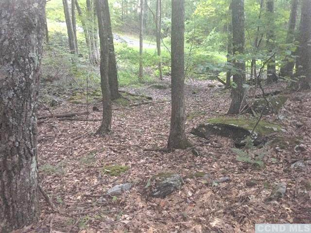 0 Paradise Lake Road, Catskill, NY 12414 (MLS #139769) :: Gabel Real Estate