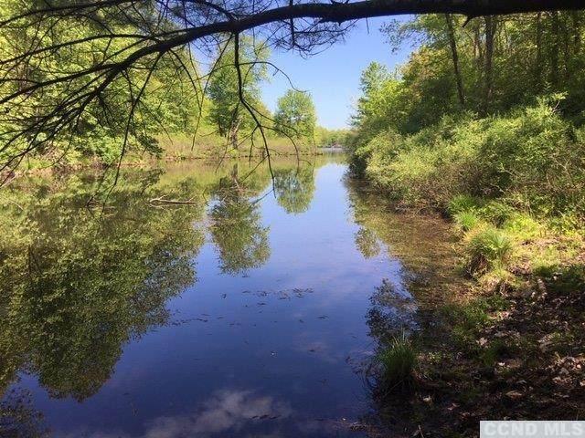 0 Paradise Lake Road, Catskill, NY 12414 (MLS #139770) :: Gabel Real Estate