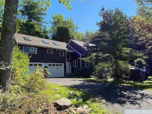 133 Clum Hill Road, Hunter, NY 12485 (MLS #133358) :: Gabel Real Estate