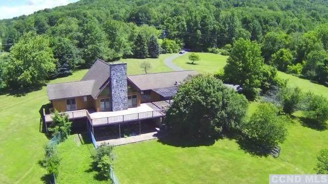 59 Goetz Road, East Chatham, NY 12060 (MLS #137663) :: Gabel Real Estate