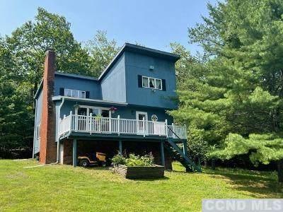183 Dederich Road, East Durham, NY 12423 (MLS #138588) :: Gabel Real Estate