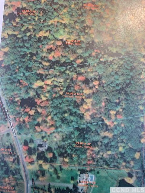 0 Hinrichsen Heights Road, Coxsackie, NY 12051 (MLS #139298) :: Gabel Real Estate