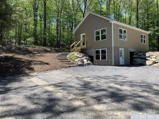 249 Route 203, Austerlitz, NY 12165 (MLS #130726) :: Gabel Real Estate