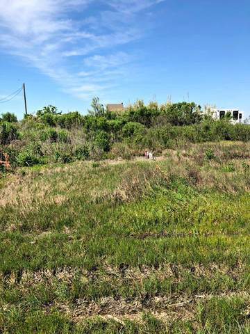 1061 Gulf Supply Road, Gilchrist, TX 77617 (MLS #75469) :: Triangle Real Estate