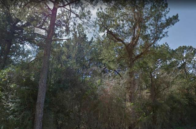 0000 Wilkins Ranch Rd, Sour Lake, TX 77659 (MLS #78697) :: Triangle Real Estate