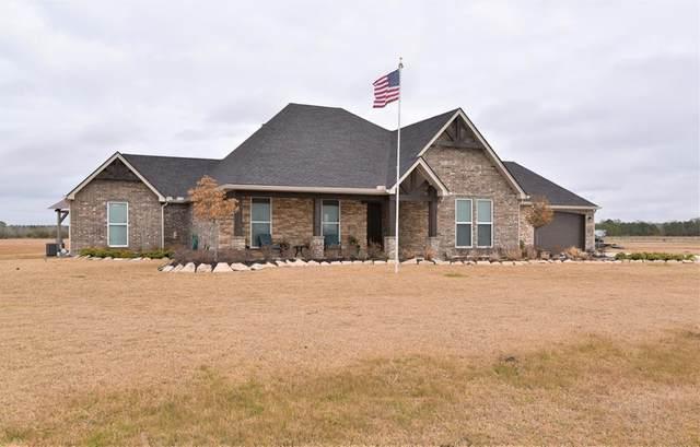 12615 Simino Dr, Hamshire, TX 77622 (MLS #81996) :: Triangle Real Estate
