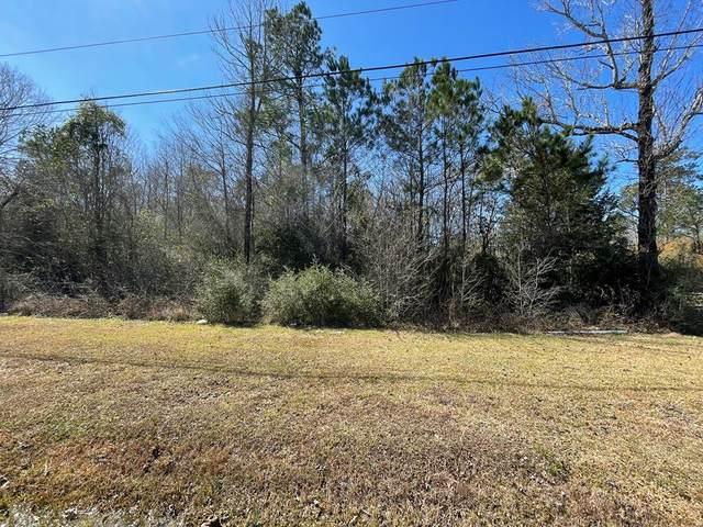 000 S Hwy 69, Lumberton, TX 77657 (MLS #82036) :: Triangle Real Estate