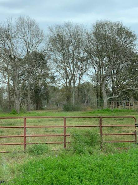 2723 63rd, Port Acres, TX 77640 (MLS #79319) :: Triangle Real Estate