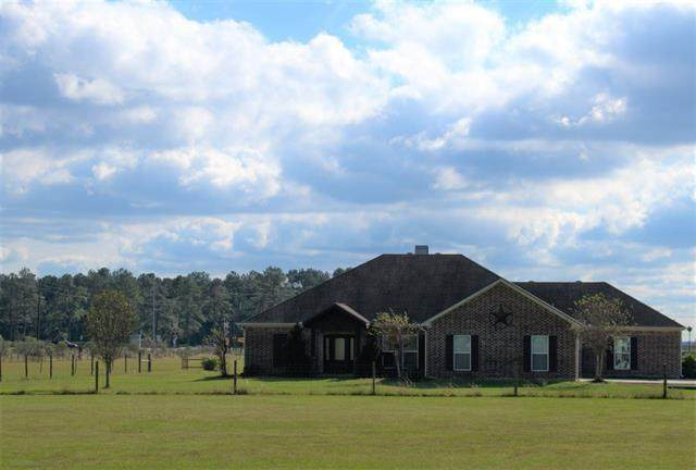15207 Bogan Rd., Beaumont, TX 77713 (MLS #81633) :: Triangle Real Estate