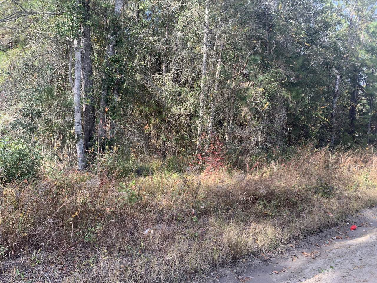 0 Whitfield Rd - Photo 1