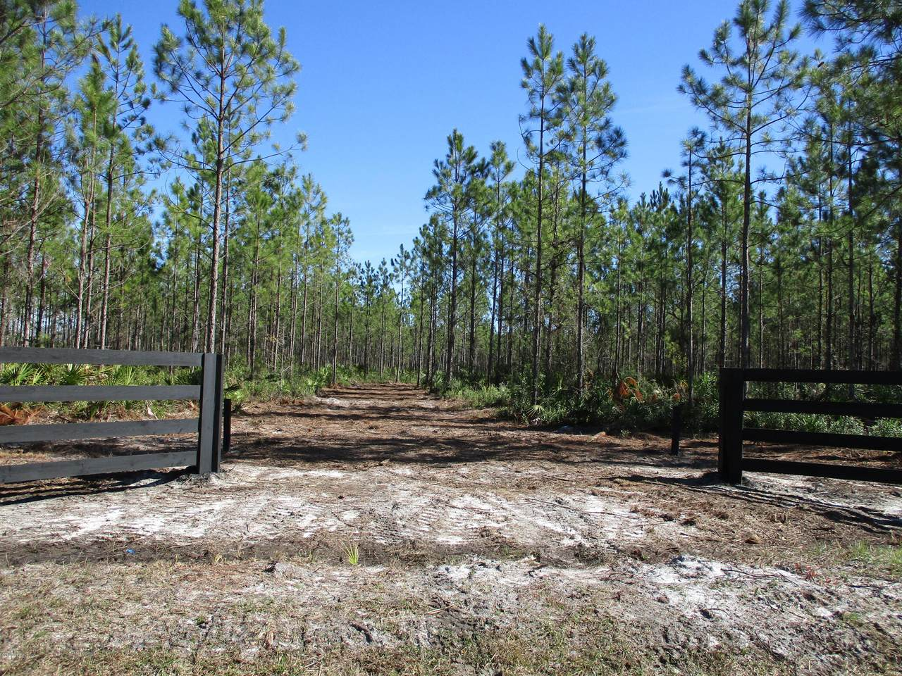 LOT 5 Old Dixie Hwy - Photo 1