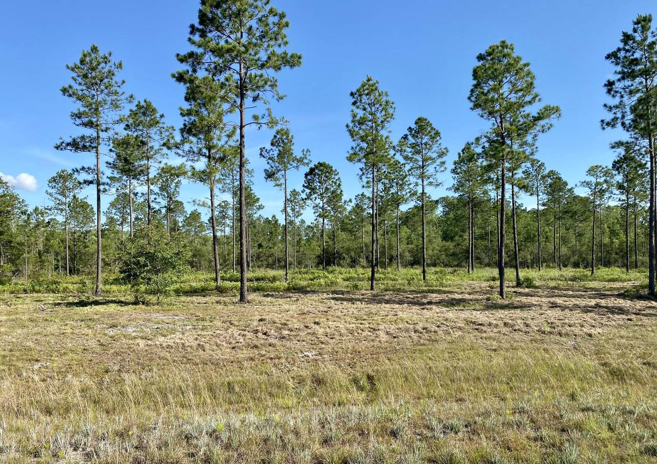 0 Brady Acres - Lot 8 - Photo 1