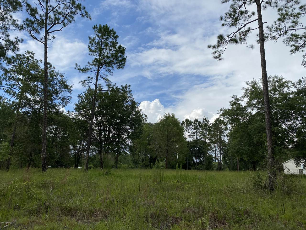 1672 St Marys River Bluff Rd - Photo 1