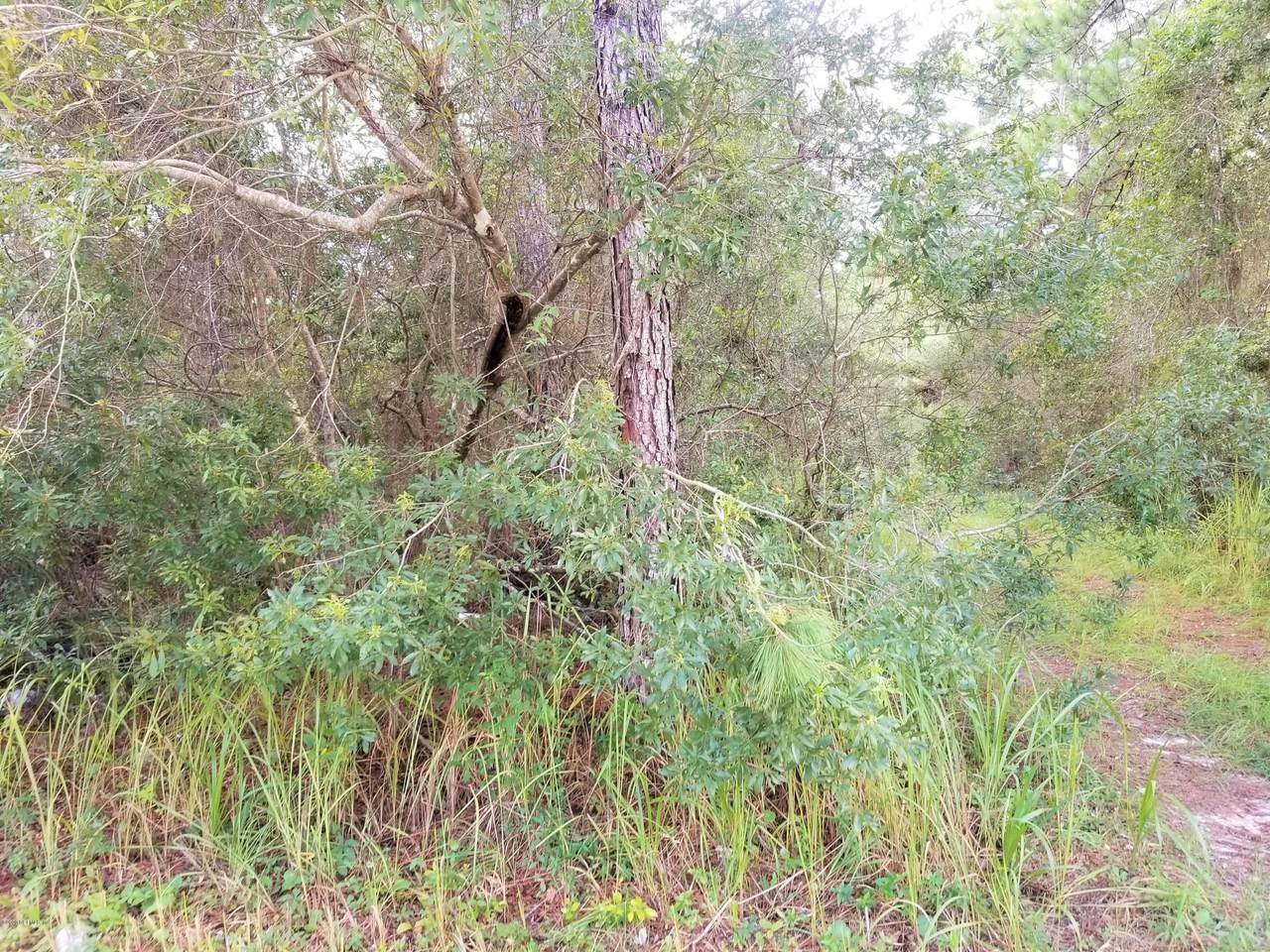 224 Pheasant Rd - Photo 1