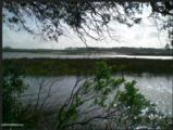0 Tortuga Point Dr - Photo 2