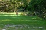 1520 Peters Creek Rd - Photo 20