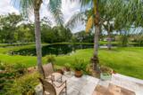 161 Sawbill Palm Dr - Photo 4