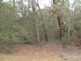 0 Live Oak Dr - Photo 5